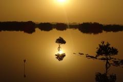 Senegal © M. Maschler