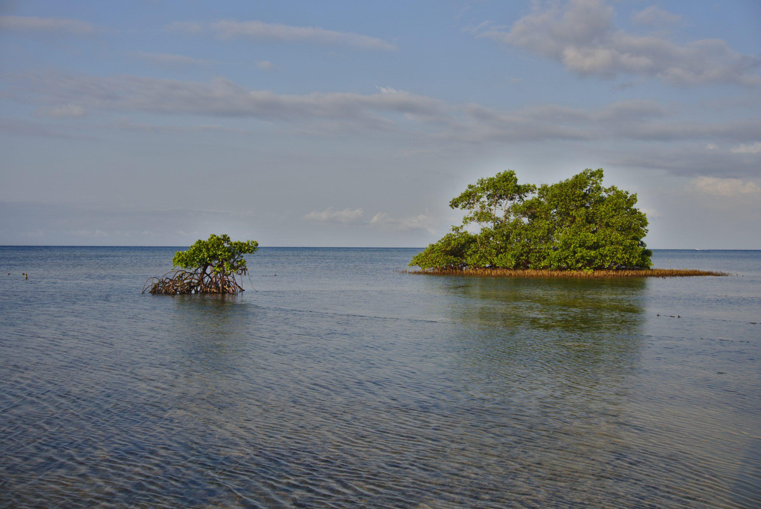 Nusa Lembongan © Marijana Toben